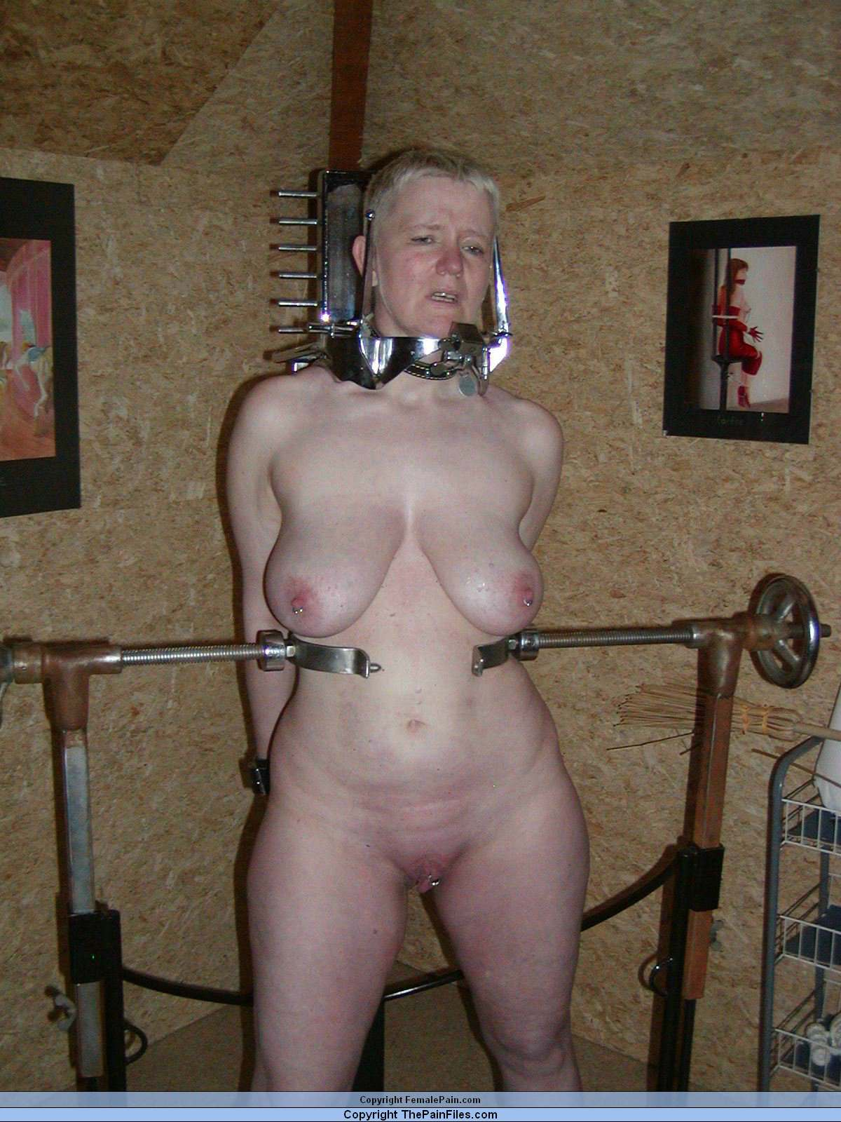 Bdsm sub dominated by male and females 10
